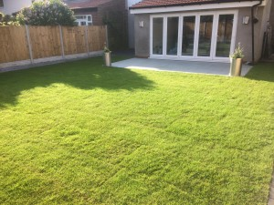 A recent turfing job in Liverpool