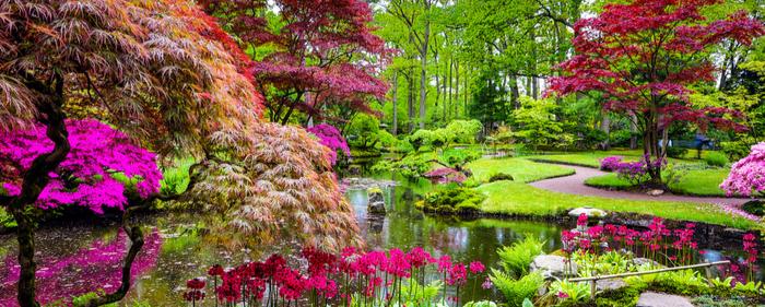 zen garden flowers